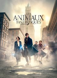 Les Animaux fantastiques streaming vf
