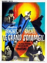 Le Grand Sommeil streaming vf