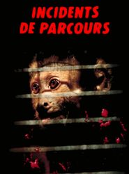Incidents de parcours streaming vf