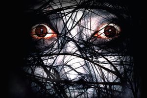 The Grudge 2 film complet