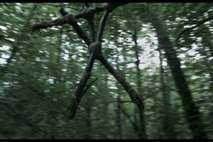 Curse of the Blair Witch film complet