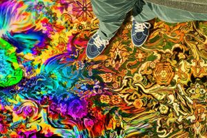 Have a Good Trip: Adventures in Psychedelics film complet