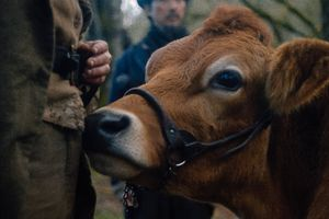 First Cow film complet