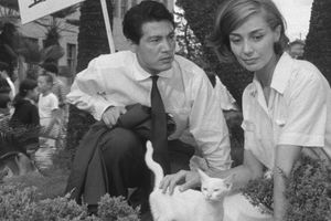 Hiroshima mon amour film complet