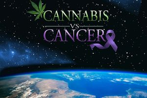 Cannabis VS Cancer film complet