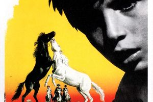 Crin blanc: Le cheval sauvage film complet