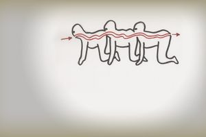 The Human Centipede (First Sequence) film complet