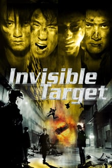 Invisible Target 2007