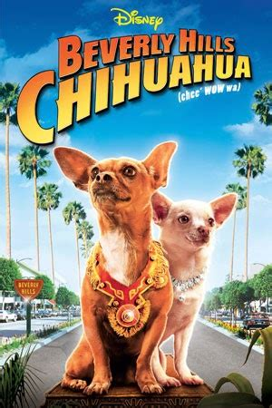 Le Chihuahua de Beverly Hills 2008 streaming vf