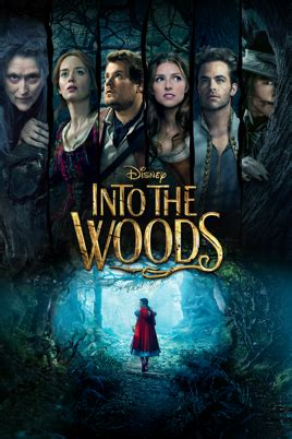 Into the Woods : Promenons-nous dans les bois 2014 streaming vf