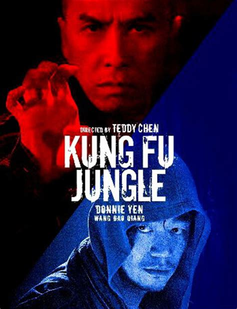 Kung Fu Jungle 2014 streaming vf