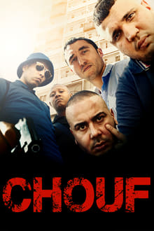 Chouf 2016 streaming vf