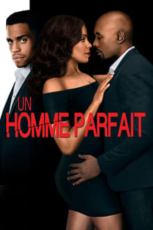 Un homme parfait 2015 bluray streaming vf