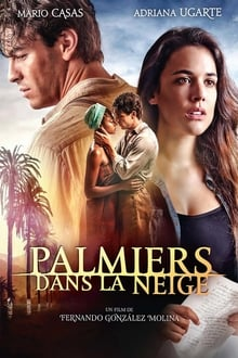 Palmiers dans la neige 2015 bluray streaming vf