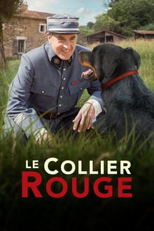 Le Collier rouge 2018 streaming vf