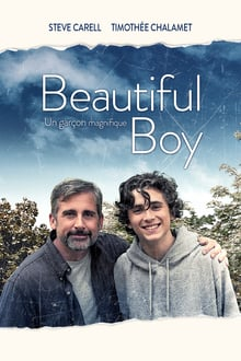 My Beautiful Boy 2018 streaming vf