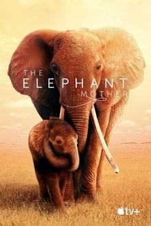The Elephant Mother 2019 streaming vf