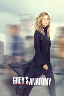 Grey's Anatomy saison 01 episode 01  streaming